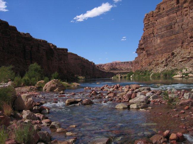 Colorado River Mouth 67